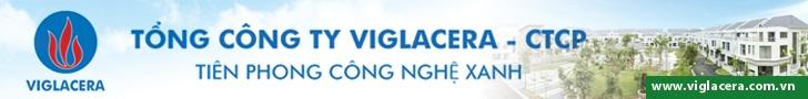 tong-cty-viglacera