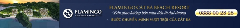 flamingo-cat-ba
