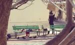 [VIDEO] Cha che nắng cho con gái bằng bìa các-tông ở bệnh viện