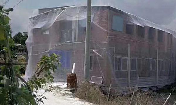 Gia đình mắc màn cho nhà hai tầng để chống muỗi