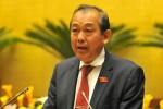 Phó thủ tướng yêu cầu kiểm tra việc cấp phép dự án Formosa