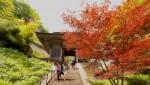 Hành trình 1.015 bước chân tới ngôi đền đẹp bậc nhất Nhật