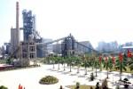 Xử lý về nhà, đất của Tổng Cty Công nghiệp Xi măng Việt Nam tại Nghệ An, Thanh Hóa, Hải Phòng