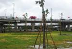 Quảng Nam: Khánh thành Nút giao vòng xuyến 2 tầng Chu Lai