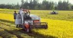 Việt Nam, Hàn Quốc tăng cường hợp tác nông nghiệp