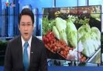 Kiểm soát nhà cung cấp để đảm bảo chất lượng rau siêu thị