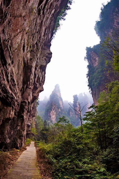Vẻ đẹp như cảnh thần tiên của ngọn núi trong phim avatar - 2