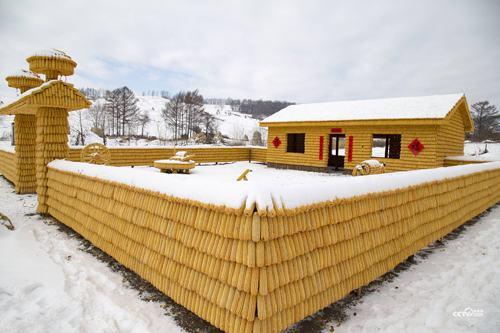 Ngôi nhà trông như dát vàng làm từ 30.000 bắp ngô