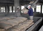 Vicem Hải Phòng: Phấn đấu tổng sản lượng tiêu thụ đạt 1.930 nghìn tấn xi măng