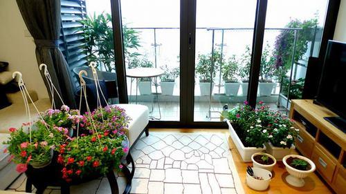 211546baoxaydung image010 Thiết kế rực rỡ sắc hoa nơi ban công nhỏ hẹp