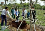 Bí thư Thành ủy TP HCM Đinh La Thăng thăm Địa đạo Củ Chi