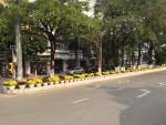 Vĩnh Yên: Đường hoa Kim Ngọc – điểm nhấn đô thị xuân Mậu Tuất 2018