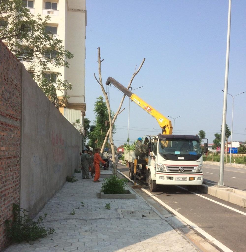 Hồng Bàng (Hải Phòng): Đô thị văn minh khẳng định Nghị quyết 05 của HĐND thành phố có giá trị thực tiễn cao