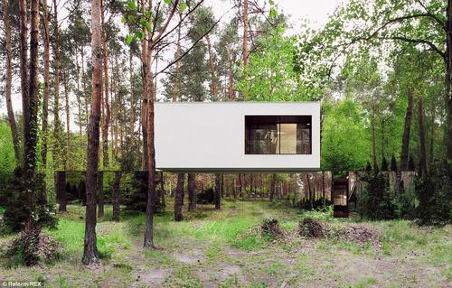 152430baoxaydung 30 Thiam quan ngôi nhà gương tuyệt đẹp ẩn mình trong rừng