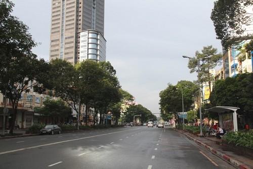 TP HCM: Chặt 12 cây xanh phục vụ thi công nhà ga Ba Son - Metro số 1