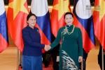 Hai Chủ tịch Quốc hội Việt Nam, Lào hội đàm