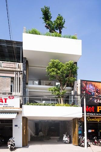 Căn nhà 3 tầng bao phủ bởi hệ thống cây xanh
