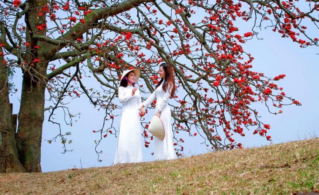Tháng Ba thương nhớ những mùa hoa