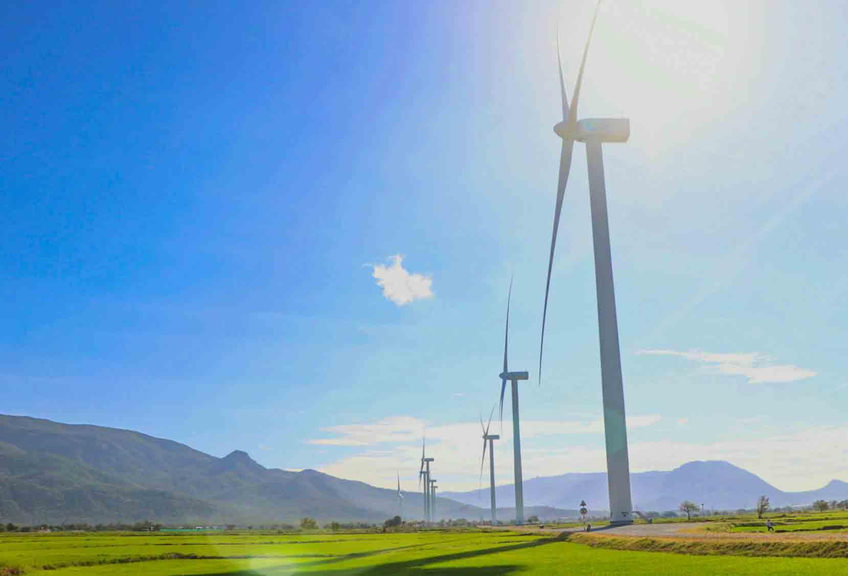 Ninh Thuận: Hủy bỏ phê duyệt Danh mục dự án Nhà máy điện gió Bim