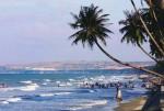 2.600 tỷ đồng xây dựng Khu đô thị Du lịch biển Phan Thiết