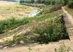 Sạt lở tại công trình Kè chống sạt lở bờ sông Mã: Do hai thủy điện Trung Sơn và Bá Thước 1 gây ra
