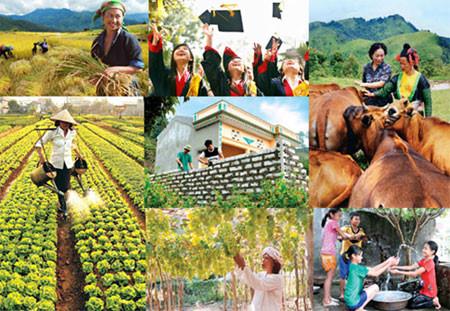 Nguyên tắc hỗ trợ địa phương thực hiện các chính sách an sinh xã hội
