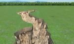 Quá trình hình thành hố tử thần dài 220 m ở New Zealand