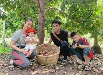 Vườn trái cây trĩu quả của gia đình diễn viên Lê Phương ở Tây Ninh