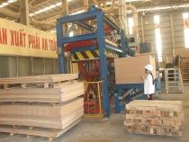Quảng Trị: Phát triển ngành Công nghiệp chế biến gỗ đến năm 2025