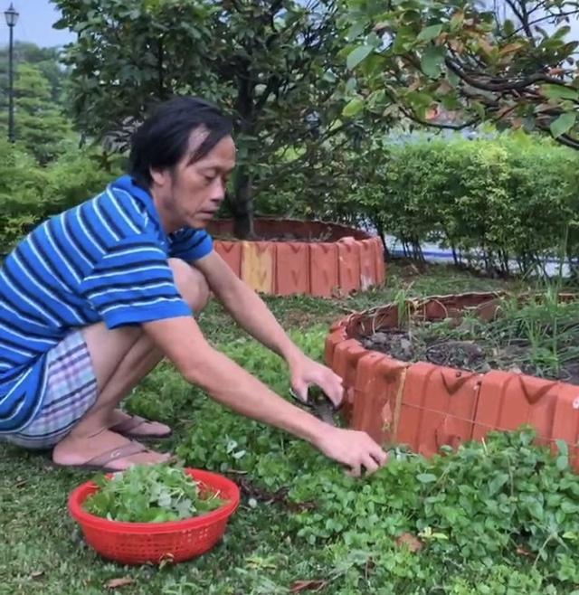 hoai linh 5 thang khong co show toi da nghi phai ban hang online