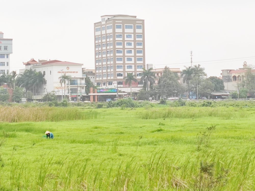 Thanh Hóa: Cảnh báo rủi ro từ dự án Khu dân cư kết hợp công viên thể thao Đình Hương