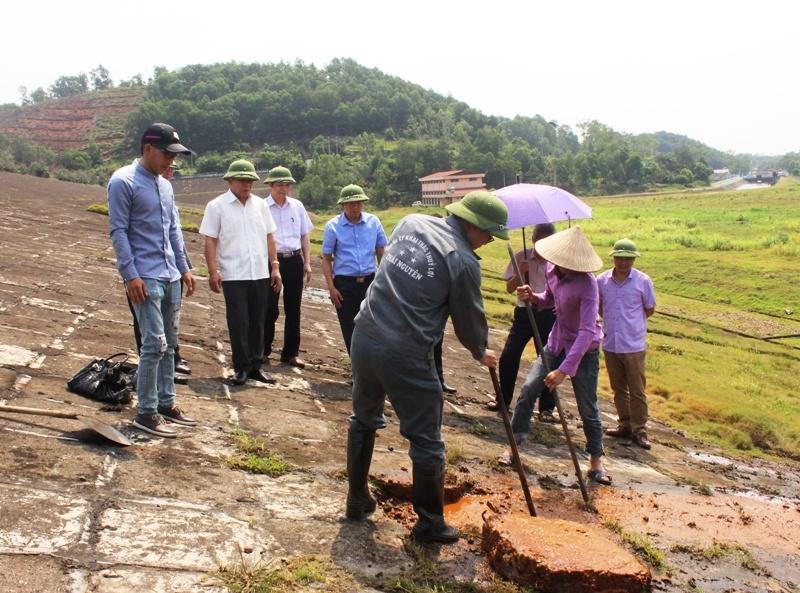 Lãnh đạo tỉnh Thái Nguyên và các ngành, đơn vị chức năng kiểm tra thân đập hồ Núi Cốc