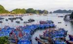 Điều chỉnh quy hoạch cảng cá khu vực đảo Cát Bà