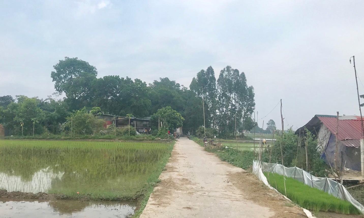 Tam Dương (Vĩnh Phúc): Xã Đạo Tú nỗ lực duy trì và nâng cao các tiêu chí Nông thôn mới