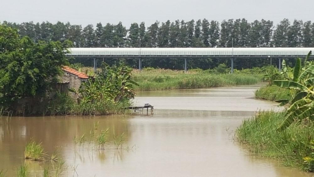 uong bi quang ninh tin chinh thuc ve viec tranh chap dat du an khu nuoi trong thuy san cong nghe cao