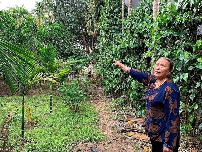 Hà Nội: Yêu cầu huyện Mê Linh kiểm tra, rà soát giải quyết đơn thư của người dân