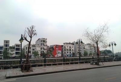 """Hồng Bàng (Hải Phòng): Cây xanh trên vỉa hè tuyến đường Tam Bạc đang """"ngắc ngoải"""""""