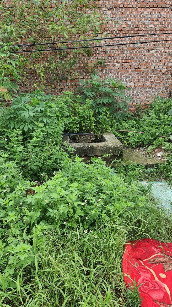 Thực hư chuyện xả thải tại dự án Rice City Sông Hồng 135 Gia Quất Long Biên