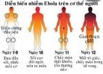 Dịch Ebola quay trở lại tại Liberia