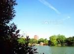 Một không gian hồ xanh mát lành, thi vị…