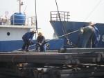 Đẩy mạnh rà soát thủ tục đối với hàng hóa xuất nhập khẩu