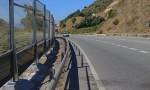 Hàng rào chống ồn trên cao tốc đe dọa chim ở Tây Ban Nha