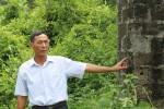Quảng Ninh: Nhiều vụ tranh chấp nhà đất vô lý