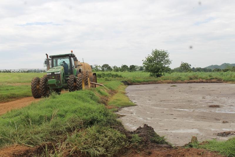 Nghệ An: Dân đề nghị xử lý ô nhiễm chất thải chăn nuôi của TH True Milk