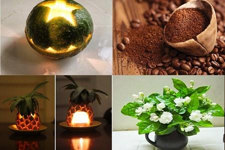 Tuyệt chiêu giúp căn phòng thơm mát với những nguyên liệu