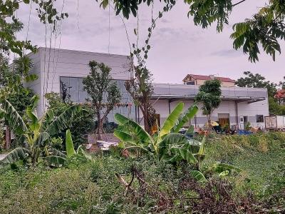 Chương Mỹ (Hà Nội): Công ty Cổ phần Hà Nội Foods Việt Nam sử dụng đất sai mục đích, vi phạm trật tự xây dựng