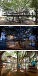 """Kỳ lạ những ngôi nhà để cây xanh """"đâm xuyên"""""""