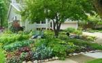 Những cách để có một mẫu nhà vườn đẹp
