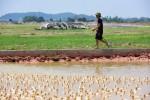 Hàng trăm dự án bỏ hoang tại Hà Nội