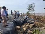 Cà Mau: Busadco thực hiện dự án kè chắn sóng khẩn cấp bảo vệ bờ biển đông khu vực cửa biển Rạch Gốc